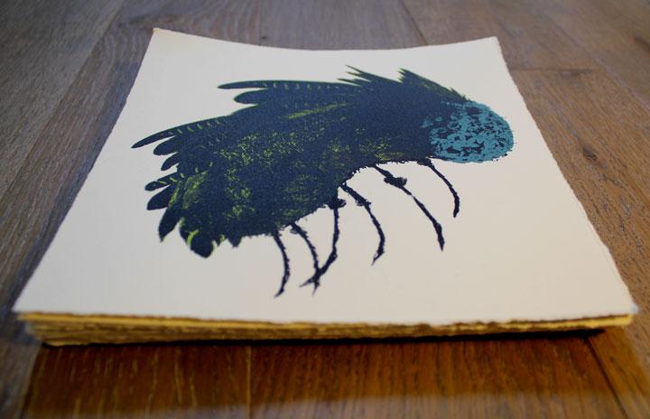 blueflystack
